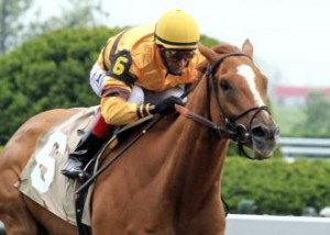 Wise Dan from DRF