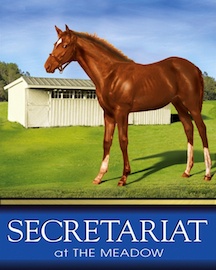 secretariat Meadow_image1