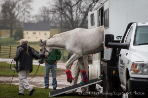 Silver Charm Old Friends credit wooley equisport photos