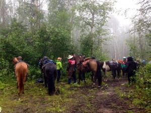 challenge of the north competitive trail ride 2015