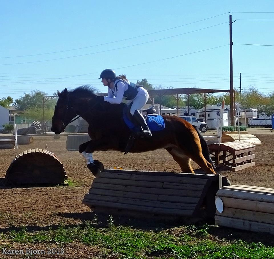 REVISIT:  SCOOTER'S OVERNIGHT, THOR'S 1ST EVENT, HEALTH PROTOCOLS – HITM FOR 02-12-2018 BY OMEGA ALPHA EQUINE