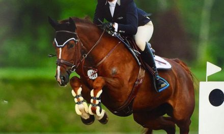 07-04-2017 by Ece Equestrian – Buying in Europe, Hunter Exercises and Emily Answers Questions