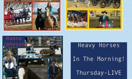 07-06-17 by 2018 World Clydesdale Show – Youth – The Future of the Heavy Horse Industry