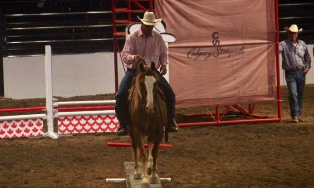 07-24-17 by Omega Alpha Equine –  Hiser's Mustang Adventure, Horse Headlines, Equestrian Teen Social Media Drama