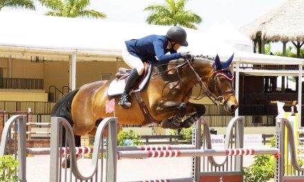 08-01-2017 by Ece Equestrian – Training Young Riders, Are Jumpers on the Right Track, Listener Questions