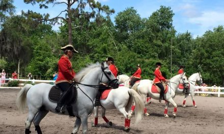 08-16-17 by HORSELOVERZ.com – Traveling with the Lipizzans, Dumb Horse Jokes, The Opium Equation Ch. 3