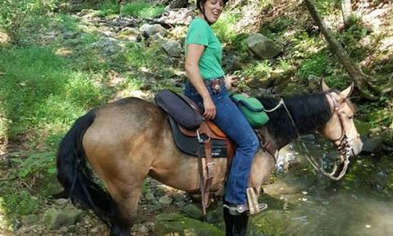 Horse Appetites, Glue-on-shoes and Riding the Shawnee National Forest – HORSELOVERZ.com for 09-20-17