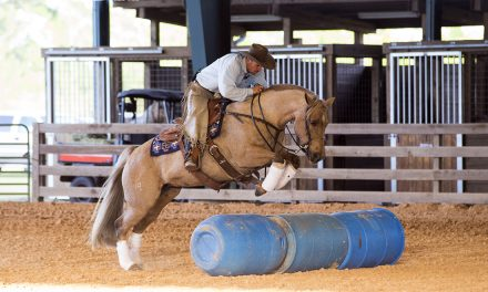 Horse Husband Transformation, Road To The Horse Announces Jim Anderson, Stubborn Mule Cross – by Kentucky Performance Products for 09-01-17