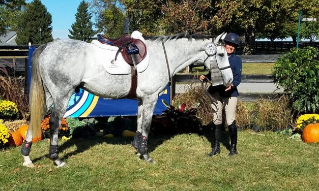 Book of Miniature Horses, Claire from Ireland, Horse Nation, Kayla on OTTB Challenge – by Omega Alpha Equine for 10-09-17