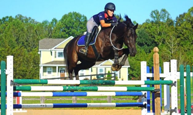 Vlad The Bridleless Jumper, RRP Rolls Royce Raffle, Too Many Tacos – by Kentucky Performance Products for 11-10-17
