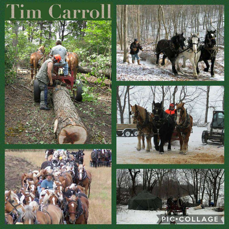 Draft Horse Journal – Tim Carroll, Tim Sparrow, Gifts for Draft Horse Fans – by '18 World Clydesdale Show for 12-07-17