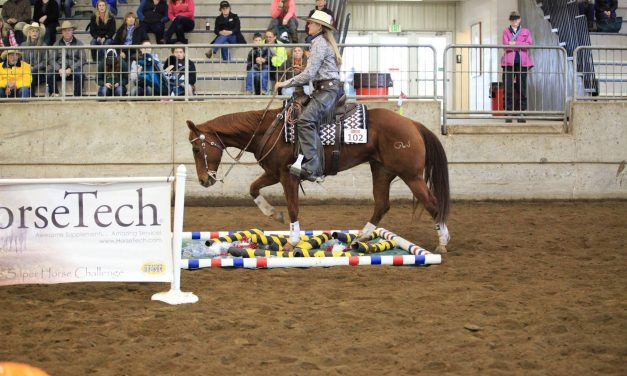 Charles Wilhelm Ultimate Super Horse Challenge, ISO Bad Pony – by Kentucky Performance Products for 12-15-17