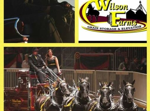 Draft Horse Journal – Wilson Farms, American Suffolk Horse – by '18 World Clydesdale Show for 01-04-18
