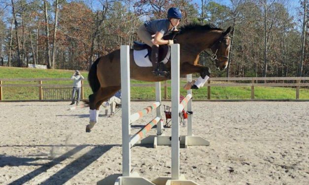 Barn Fire, Paulus Rehoming OTTB's, 1st World Problems, Healthy Horse – 01-08-18 by Omega Alpha