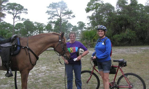 Teda Natural Liniment and Riding in the Everglades for 02-05-2018 by Omega Alpha Equine