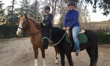 Dr. Burk on Equine Cushings, Bad Linement Advice – by Horseloverz.com for 02-07-2018