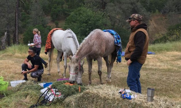 Relive App, Cache Creek Ridge Ride, Horse Conditioning Tips – Endurance Day for 05-08-18