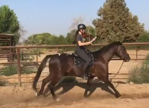 Viral Horse Riding Video, Endurance Race Training, and Really Bad Ads – 08-31-18 by Kentucky Performance Products