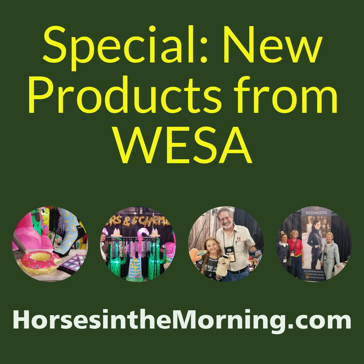 HITM For June 22, 2019 Special: New Products From WESA