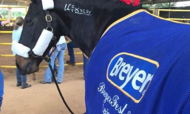 Hoof Care Must Haves, Marsha Hartford Sapp Live from Breyerfest, Pony Place App, July 12, 2019 by Kentucky Performance Products
