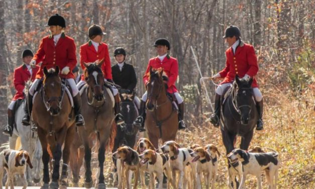 Tryon Hounds Mentoring Program, Yankee in Paris at Iroqouis Hunter Paces, for Sept. 19, 2019 by MFHA