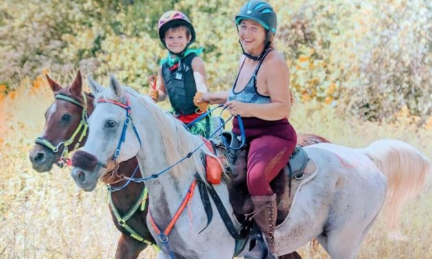 Seven Year Old Endurance Rider, Vitamins and Minerals and Horse Forums for Dec 16, 2019 by Omega Alpha Equine
