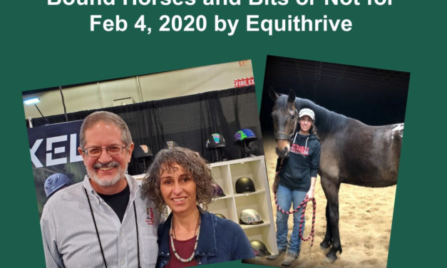 Stacy Westfall: Horse Careers, Questions on Cross Canters, Herd Bound Horses and Bits or Not for Feb 4, 2020 by Equithrive