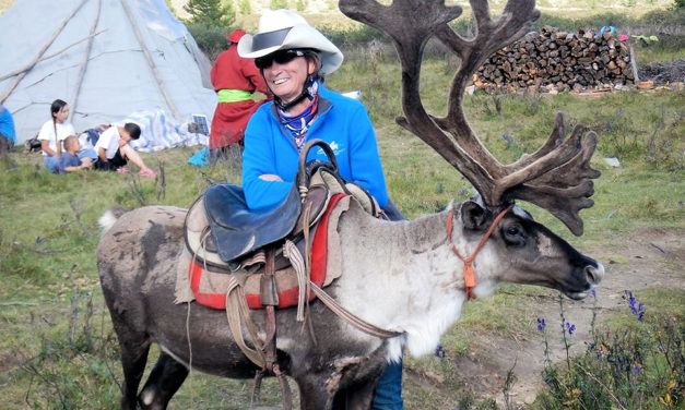 Endurance Day: Equilab App, Saddle Fitting and Horse Trekking in Mongolia for Feb. 11, 2020