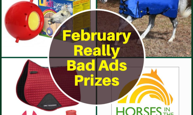 Find a Barn, Burn Calories at the Barn, Never Have I Ever and Reallie BAdd Adz for Feb. 14, 2020 by Kentucky Performance Products
